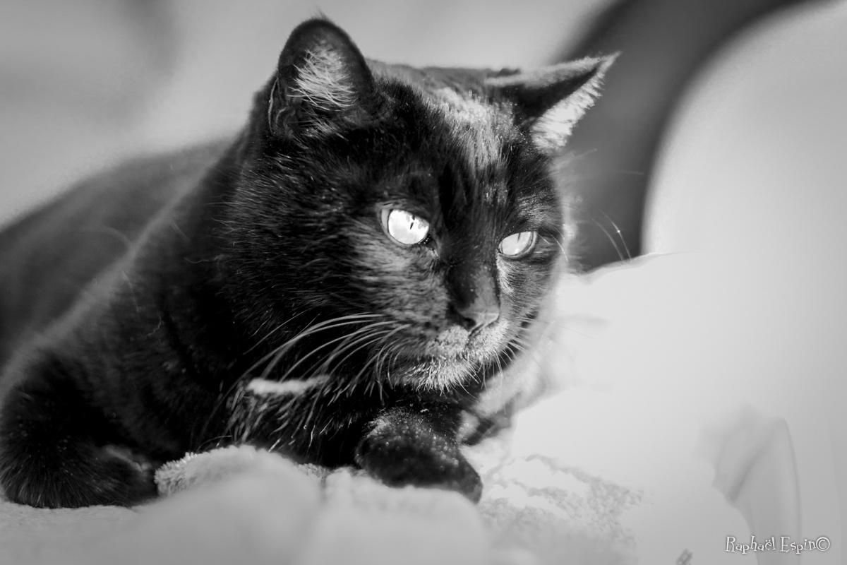 Mina, pensive