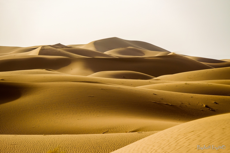 Dunes, Sahara occidental, Maroc