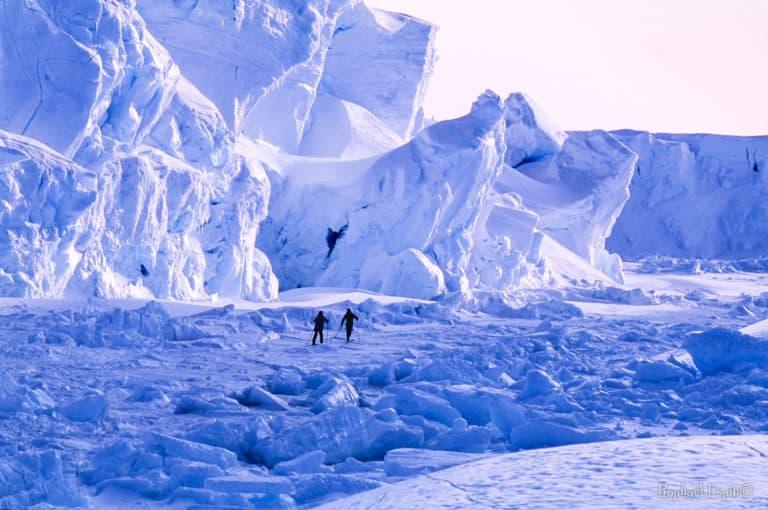 Sortie le long du glacier de l'Astrolabe, sur une banquise tourmentée. C'est là que le glacier termine sa course et libère dans l'océan des icebergs par dizaines. Zone non recommandée pour la balade. Dans cet enchevêtrement de glace que le mouvement sous-marin habite de craquements sinistres, nous prenions la pleine mesure de notre petitesse